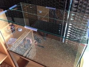 フレームレスガラス水槽